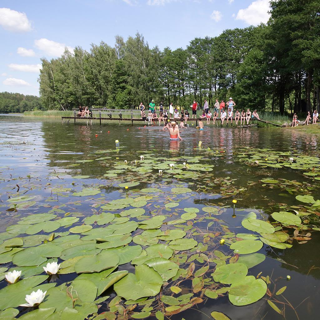 Jaunųjų turistų stovykla